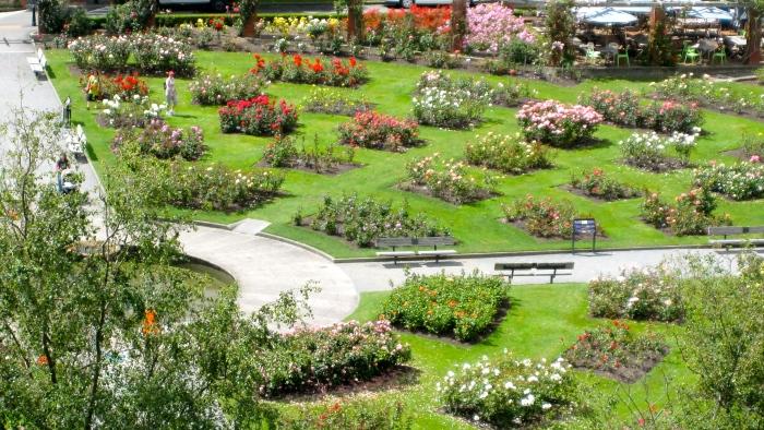 Rosengarten.JPG