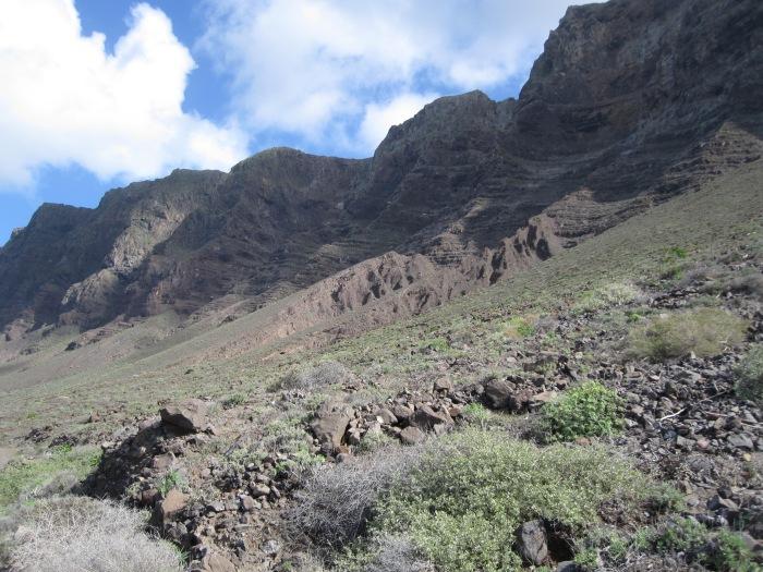 Famara Kliffs .JPG
