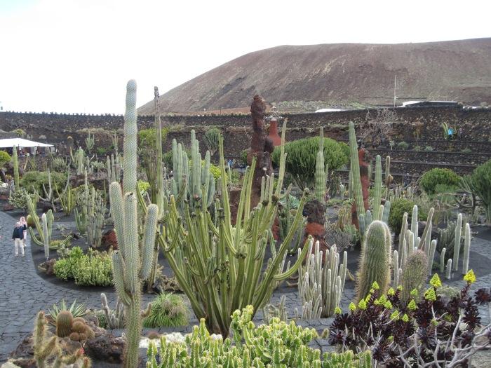 Kaktusgarten.JPG
